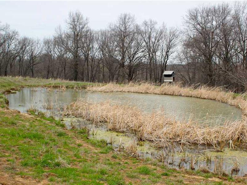 Price Reduced, Great, Johnson Co : Warrensburg : Johnson County : Missouri