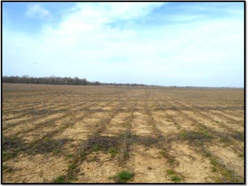 65 Acres In Leflore County : Ruleville : Leflore County : Mississippi