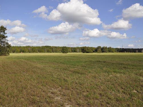 Leesburg Residential Land : Leesburg : Lake County : Florida