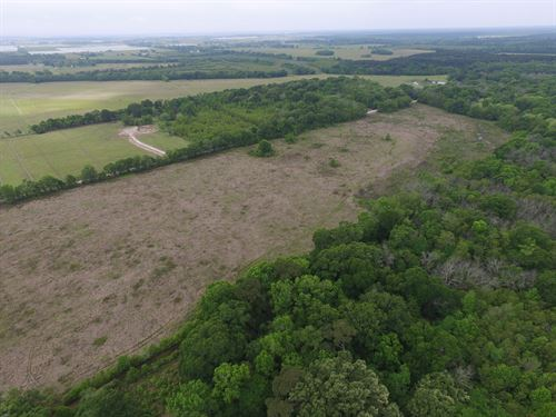 40 Acres Easton Evangeline Parish : Ville Platte : Evangeline Parish : Louisiana