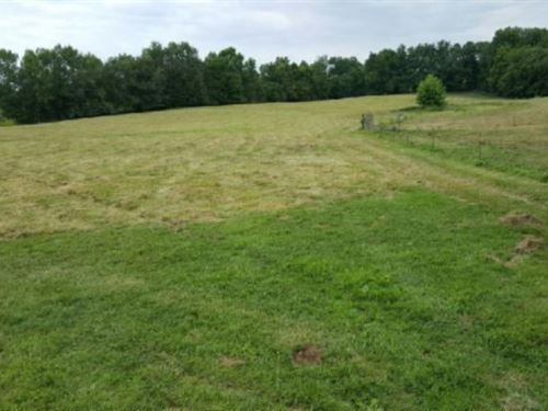 21+ Ac Joins Corp, Mostly Pasture : Livingston : Overton County : Tennessee
