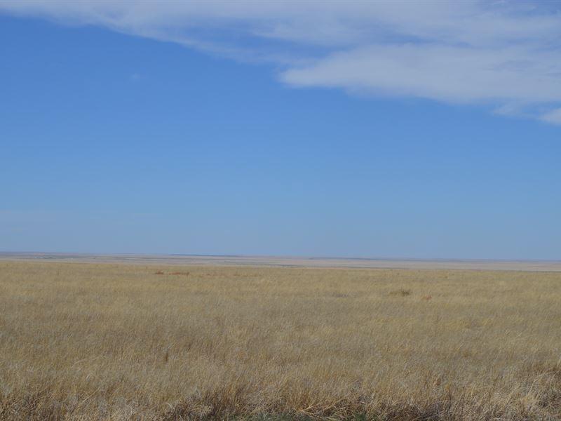 320 Acres Crp In Kiowa County, Co : Eads : Kiowa County : Colorado