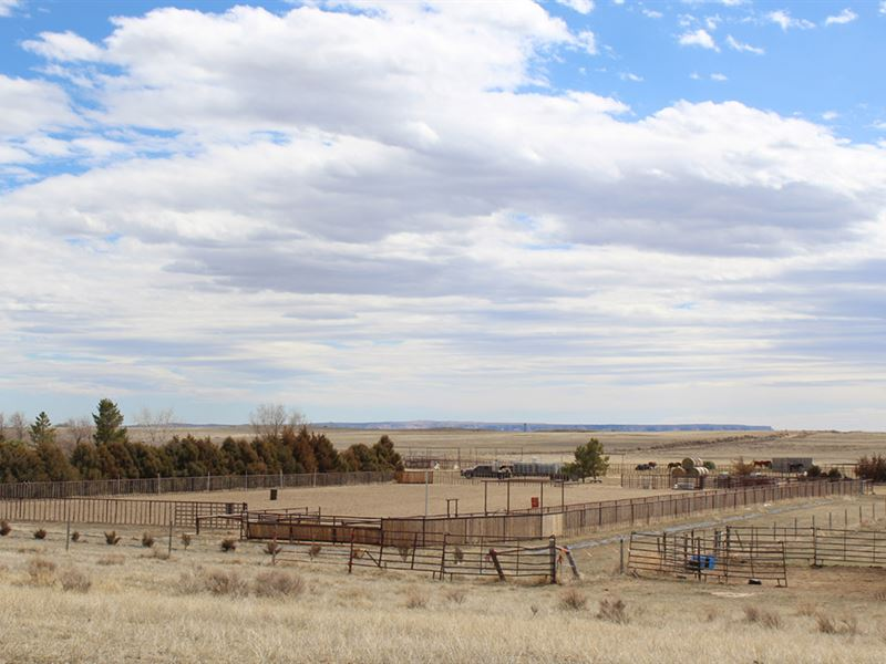Schafer Horse Property : Yoder : Goshen County : Wyoming
