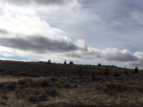 Belt Mountain Beauty : White Sulphur Springs : Meagher County : Montana