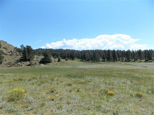 Teller Park Ranch - Parcel 3 : Florissant : Park County : Colorado