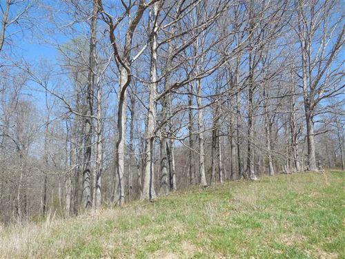 Hibernia Ridge Rd, Tract 5 : Buffalo : Taylor County : Kentucky