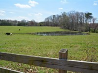 Mill Pond Acres : Saxe : Charlotte County : Virginia