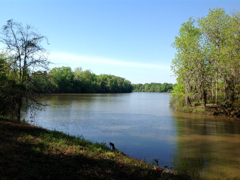 River Lot With Private Boat Ramp : Orrville : Dallas County : Alabama