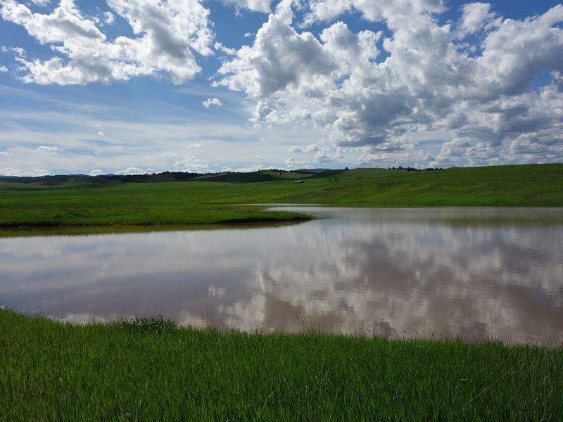 Fairview Ranch : Hermosa : Custer County : South Dakota