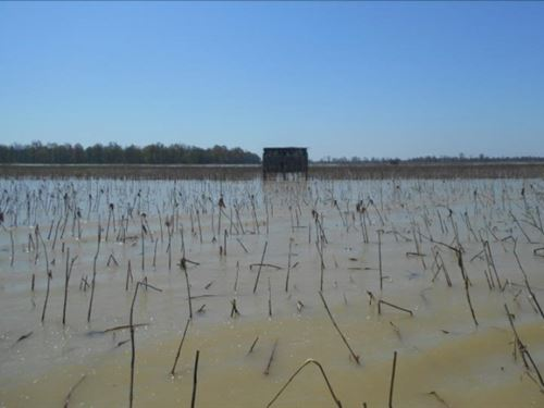 160 Acres In Tallahatchie County In : Stover : Tallahatchie County : Mississippi