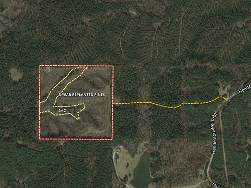Hamrick Choctaw : Ackerman : Choctaw County : Mississippi