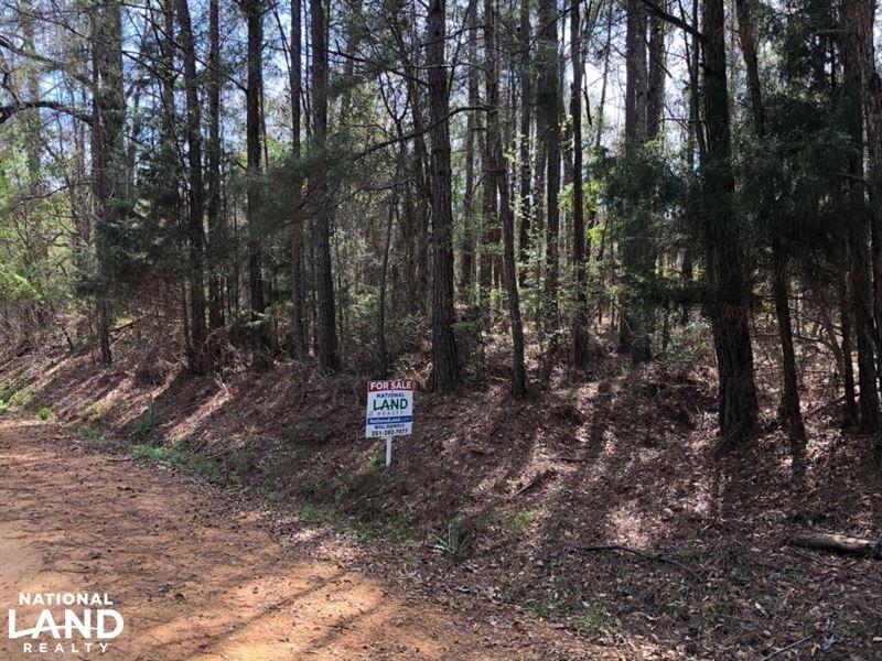 Georgiana Homesite/Timber Investmen : Georgiana : Butler County : Alabama