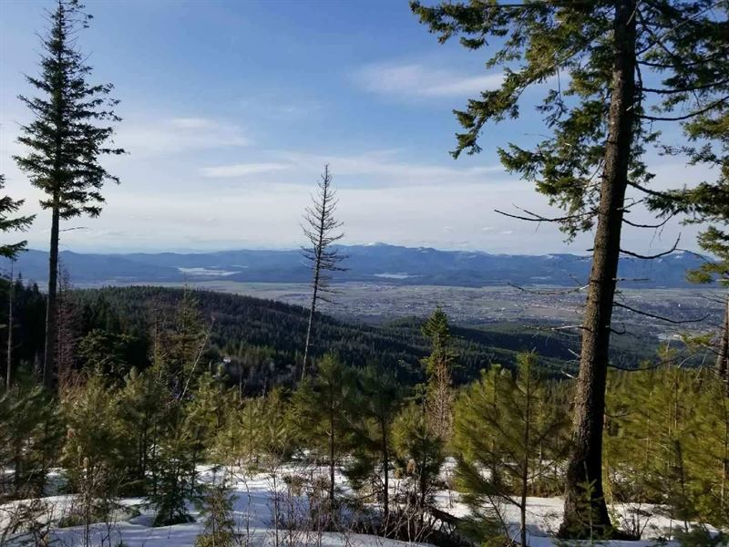 Blossom Mountain Views : Post Falls : Kootenai County : Idaho
