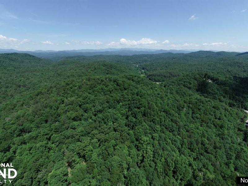 Panoramic Views On Trout Stocked Ea : Brevard : Transylvania County : North Carolina
