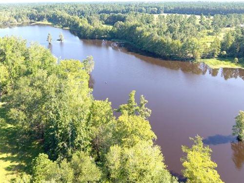 Black Mingo Lakes : Georgetown : South Carolina