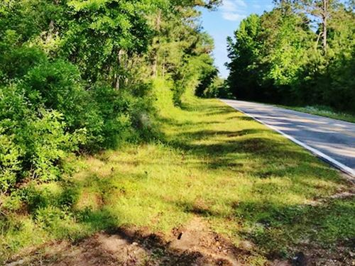 64 Acres Wolf River Frontage Land : Poplarville : Pearl River County : Mississippi
