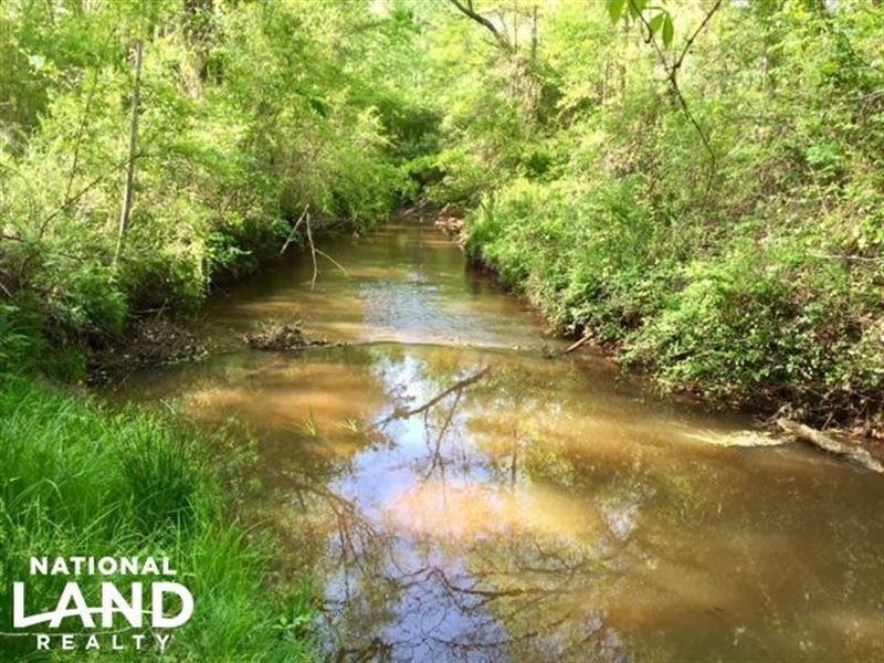 Marion County Kinchafoonee Creek Hu : Buena Vista : Marion County : Georgia