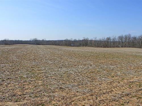 Land With Plenty Of Road Frontage : Mechanicsburg : Clark County : Ohio