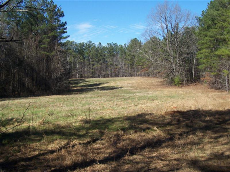 Wilkes County Hunting/Timber Tract : Tignall : Wilkes County : Georgia