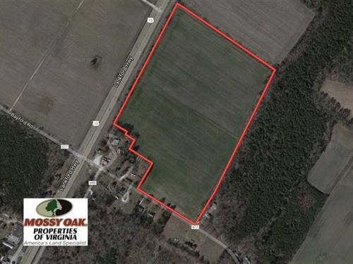 30 Acres of Hunting Land For Sale : Weirwood : Northampton County : Virginia