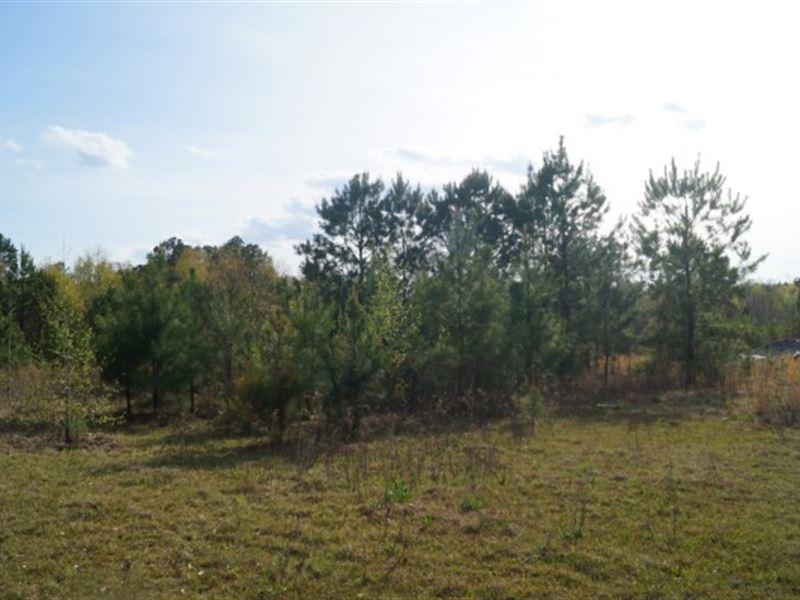 7.59 Acres - Fairfield County, Sc : Winnsboro : Fairfield County : South Carolina