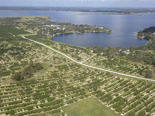 Crooked Lake Development : Babson Park : Polk County : Florida