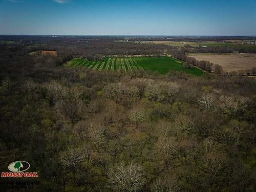 80 Hunting And Tillable Farm For : Miami : Ottawa County : Oklahoma