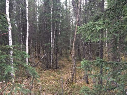 6.97 Acres of Secluded Residential : Wasilla : Matanuska-Susitna Borough : Alaska