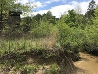 80 Acres Located in Webster Cou : Eupora : Webster County : Mississippi