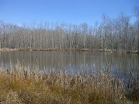 448 Acre Farm With Duck Hunting : Hollywood : Jackson County : Alabama