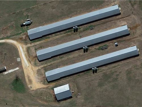 Tyson Broiler Farm With 3 Houses : West Fork : Washington County : Arkansas