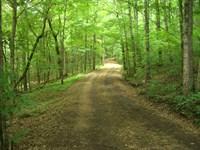 216 Acres Mountain Land With Cabins : Scottsboro : Jackson County : Alabama