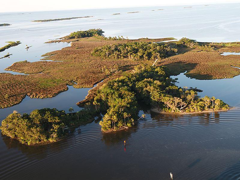 Chambers Island In Yankeetown : Yankeetown : Levy County : Florida
