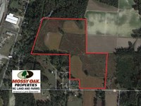 42 Acres of Farm And Timber Land : Rocky Mount : Edgecombe County : North Carolina