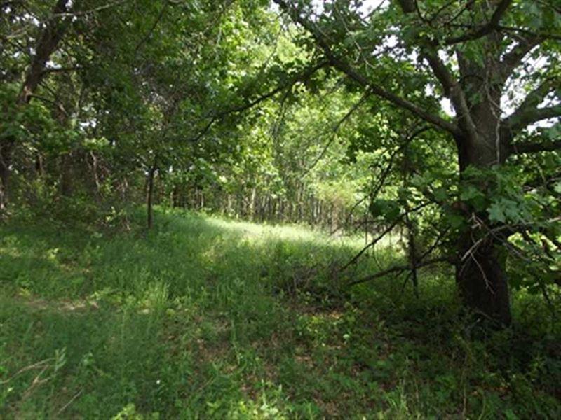 20 Acres Southwest Wisconsin, Gran : Boscobel : Grant County : Wisconsin
