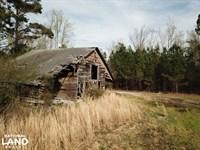 Jordan Branch Farm : Nichols : Horry County : South Carolina