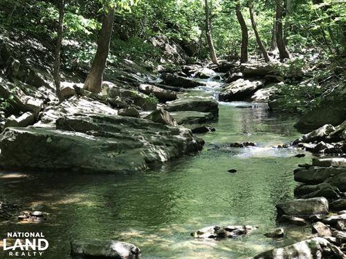 68 Acre Wilson Creek Hunting Pro : Rupert : Van Buren County : Arkansas