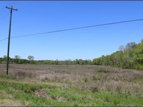 25 Acres In Neshoba County : Philadelphia : Neshoba County : Mississippi