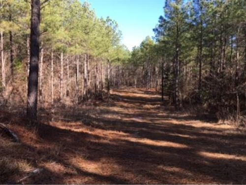 100 Acres In Pontotoc County : Shannon : Pontotoc County : Mississippi