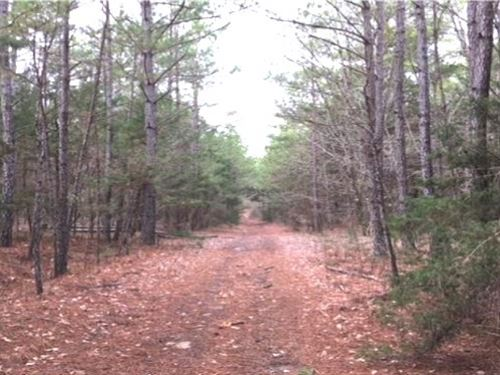 64.5 Acres In Pontotoc County In Sh : Shannon : Pontotoc County : Mississippi