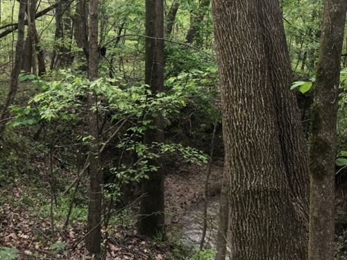 15 Acres In Hinds County, Ms : Jackson : Hinds County : Mississippi