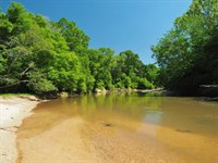 192 Acres Mature Hardwood River Fro : Summit : Pike County : Mississippi