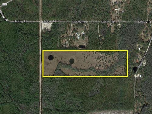 55 Ac In Wakulla County : Crawfordville : Wakulla County : Florida