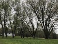 Home On 7 Acres In Metcalfe County : Edmonton : Metcalfe County : Kentucky