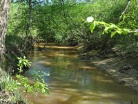 114.82 Acres Anderson County Tx : Neches : Anderson County : Texas