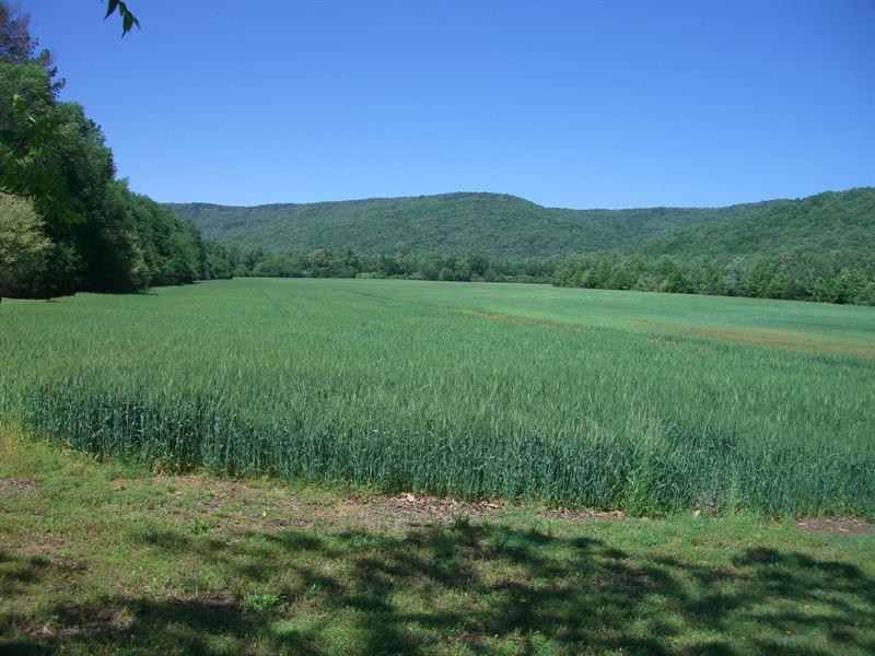 93 Ac Farm Fackler Al : Fackler : Jackson County : Alabama
