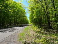 Coles Creek Road - Lot 12 : Houghton : Houghton County : Michigan