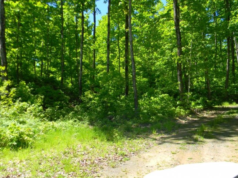 Coles Creek Road - Lot 9 : Houghton : Houghton County : Michigan