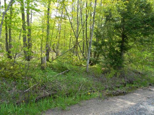 Asumaa Road : Houghton : Michigan