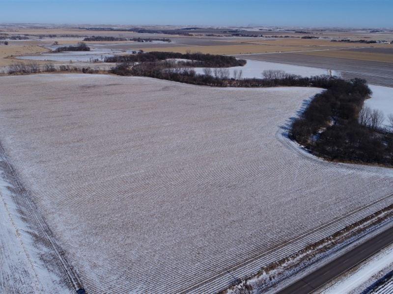 Dawson County Hunt And Farm : Cozad : Dawson County : Nebraska